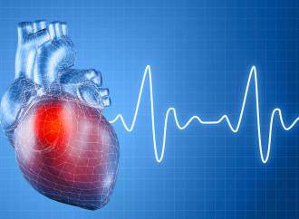¿El colesterol LDL más bajo es mejor?