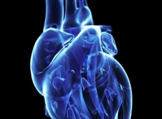 ¿Qué tipos de ejercicios pueden hacer los pacientes portadores de miocardiopatías?