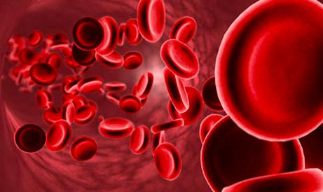 Nuevas Guías Europeas acerca del uso de los Nuevos Anticoagulantes Orales no dependientes de la vitamina K en F.A.