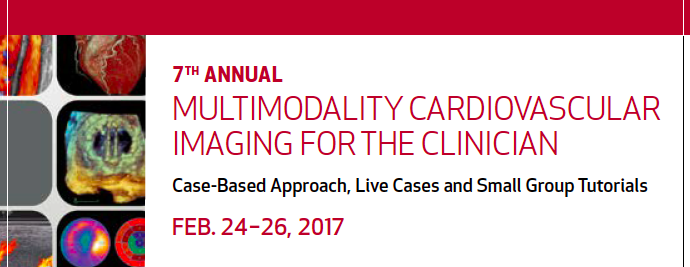 Multimodality cardiovascular imaging for the clinician