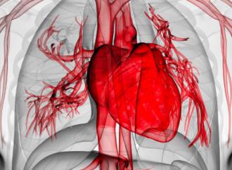 Evaluación cardiovascular pre-participación para la prevención de muerte súbita en atletas