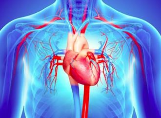 Actualización de conceptos acerca de diuréticos