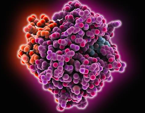 Idarucizumab para reversión de dabigatran