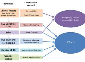 Perfeccionando la estratificación del riesgo de muerte súbita en la miocardiopatía dilatada: más allá de la fracción de eyección