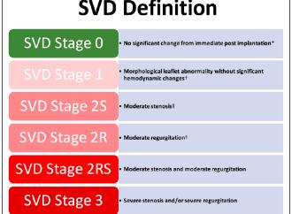 Definición estándar de la degeneración estructural de bioprótesis quirúrgicas o percutáneas