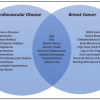 Enfermedad Cardiovascular y Cáncer de Mama: Donde se entrecruzan estas entidades