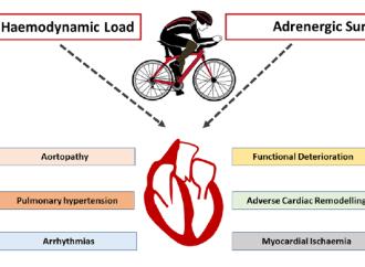Recomendaciones para realizar ejercicio en pacientes valvulares