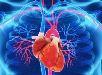 Inhibidores del punto de control inmunitario y toxicidad cardiovascular