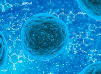 Miocardiopatía inducida por el tratamiento del cáncer: ¿pueden las células madres humanas pluripotenciales inducidas, ayudar a prevenirla?