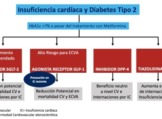 Tratamiento hipoglucemiantes para pacientes con insuficiencia cardíaca y diabetes