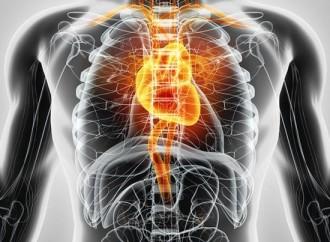 Estudio HOPE -4: Una nueva esperanza para el control de la hipertensión arterial y la disminución del riesgo cardiovascular en nuestra población