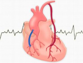 Impacto de la cirugía coronaria arterial extendida en el mundo real. Evidencias y obligaciones de la cirugía cardíaca