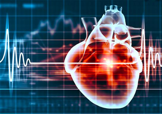 Cardiotoxicidad, prevención y resultados