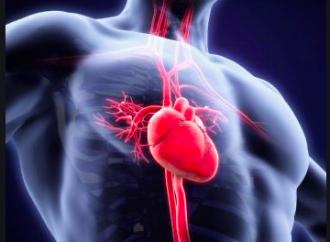 Prevalencia de endocarditis infecciosa en pacientes con hemocultivos positivos  De cara a una patología con nuevo perfil epidemiológico