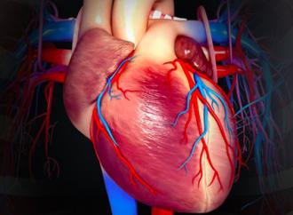 Relación entre la insuficiencia cardiaca con fracción de eyección preservada y la disfuncion microvascular