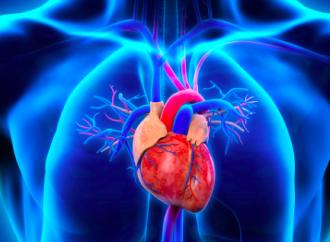 Nuevos y conocidos desafíos en la insuficiencia cardíaca: ¿Los inhibidores de SGLT2 podrán formar parte del standard of care?