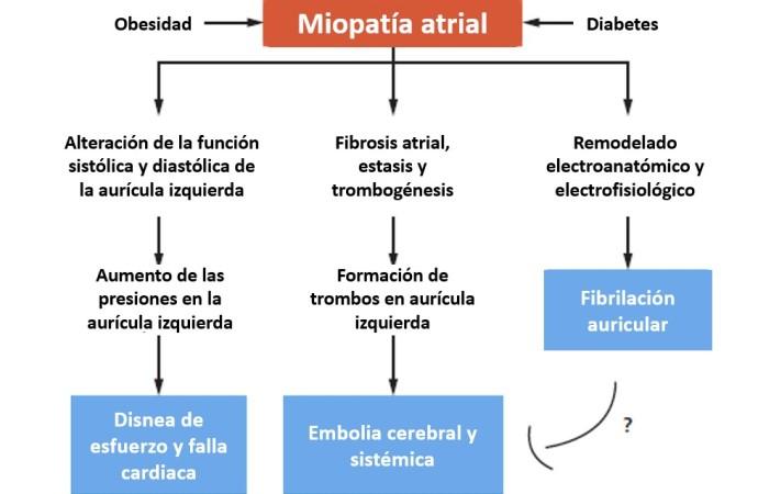 Riesgo de ACV en pacientes con falla cardiaca con fracción de eyección preservada, obesidad y diabetes
