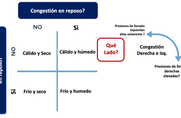 Consenso ACC 2019 para el manejo de pacientes hospitalizados por insuficiencia cardíaca