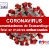 Recomendaciones Ecocardiograma Fetal para el cuidado y atención de pacientes embarazadas frente a la pandemia