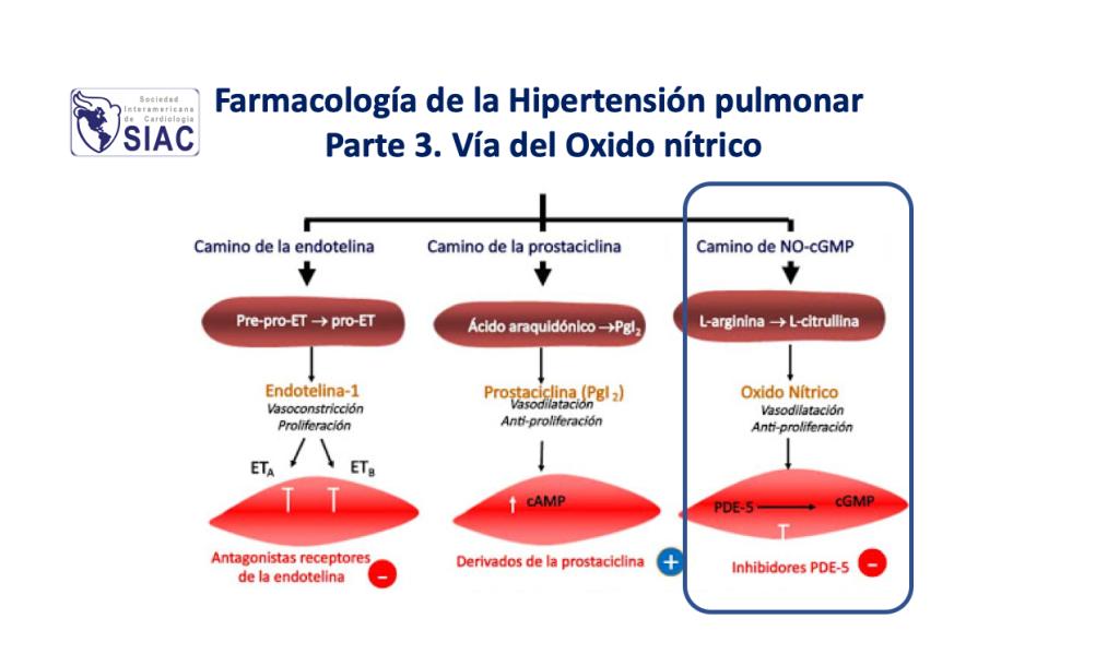 El misterio oculto detrás de Hipertensión pulmonar