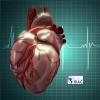Aporía o dilema: Cómo iniciar el tratamiento de la insuficiencia cardíaca con fracción de eyección reducida