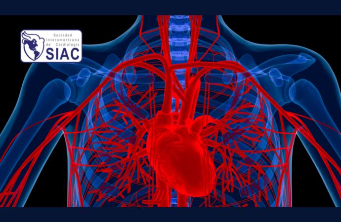 ¿Cómo adaptar la terapia médica según los perfiles de pacientes con insuficiencia cardíaca?
