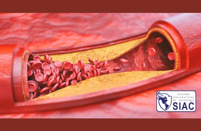 Un nuevo objetivo terapéutico en la lucha contra la trombosis: Glicoproteína VI