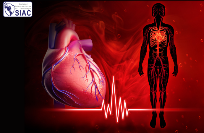 El índice de shock y su utilidad en emergencias coronarias y otras